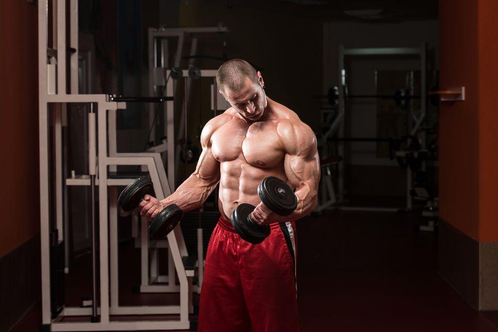 Brustmuskeln trainieren mit Hanteln